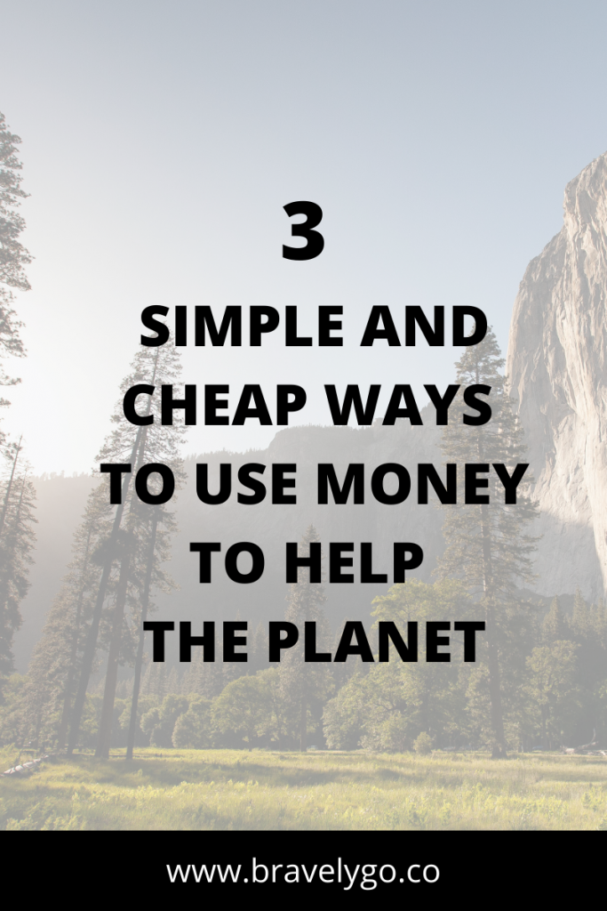 forest background with text for Ethical Investing 3 simple ways to use money to help the planet